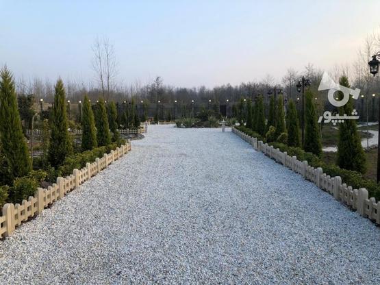 3100 متر ویلا در زیباکنار، سندددار، بسیار مناسب در گروه خرید و فروش املاک در گیلان در شیپور-عکس3