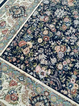 فرش 12 متری کاشان تراکم 3600 ...شانه1200 اکبند   اکبند در گروه خرید و فروش لوازم خانگی در تهران در شیپور-عکس5