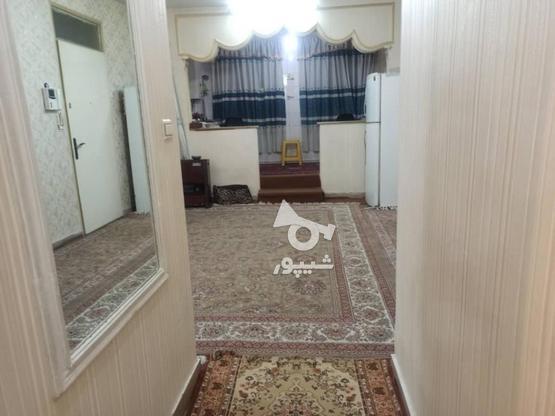 فروش آپارتمان 51 متر در بریانک در گروه خرید و فروش املاک در تهران در شیپور-عکس4