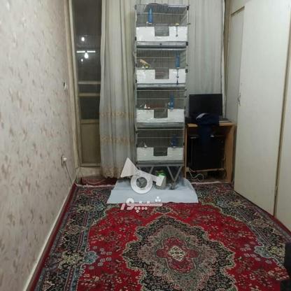 فروش آپارتمان 51 متر در بریانک در گروه خرید و فروش املاک در تهران در شیپور-عکس5