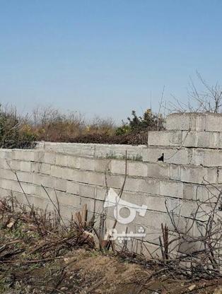 فروش زمین مسکونی 213 متر در آمل در گروه خرید و فروش املاک در مازندران در شیپور-عکس2