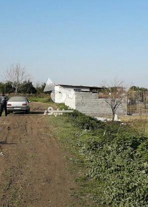 فروش زمین مسکونی 213 متر در آمل در گروه خرید و فروش املاک در مازندران در شیپور-عکس1