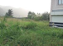 فروش زمین مسکونی 182 متر در لنگرود در شیپور-عکس کوچک