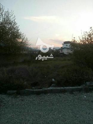 فروش زمین مسکونی 276 متر سند دار و خوش نقشه در چالوس در گروه خرید و فروش املاک در مازندران در شیپور-عکس2