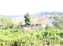 فروش زمین مسکونی 450 متر در صومعه سرا در شیپور-عکس کوچک