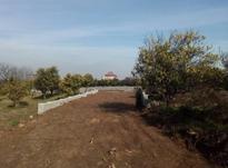 فروش 2400متر زمین بالای تپه با ویو عالی در شیپور-عکس کوچک
