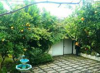 خرید ویلا شهرکی باغی 295 متر در آمل در شیپور-عکس کوچک