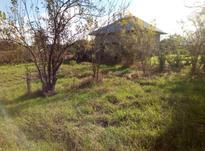 فروش زمین مسکونی 340 متر در صومعه سرا در شیپور-عکس کوچک