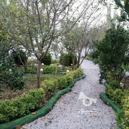 خرید ویلا باغ شهرکی سنددار جنگلی 500 متر در چمستان در گروه خرید و فروش املاک در مازندران در شیپور-عکس3