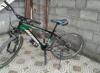 فروش دوچرخه حرفه ای المپیا سایز 26 در شیپور-عکس کوچک