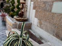 فروش باغچه 1100 متر در شهریار در شیپور-عکس کوچک