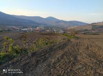 زمین چسبیده به بافت روستای کوهمیان در شیپور-عکس کوچک