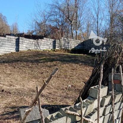 فروش زمین مسکونی 200 متر در تنکابن در گروه خرید و فروش املاک در مازندران در شیپور-عکس2