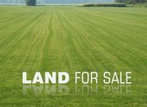 فروش زمین / مسکونی / 500 متری / بردوم بلوارسمیه در شیپور-عکس کوچک