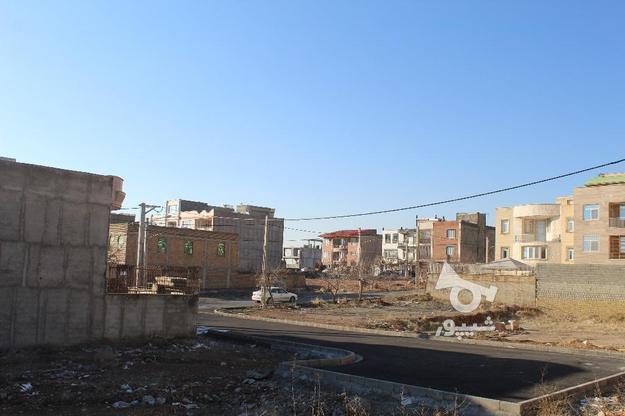 فروش زمین ویلایی شهرجدیدهشتگرد 300 متر فاز1 در گروه خرید و فروش املاک در البرز در شیپور-عکس2