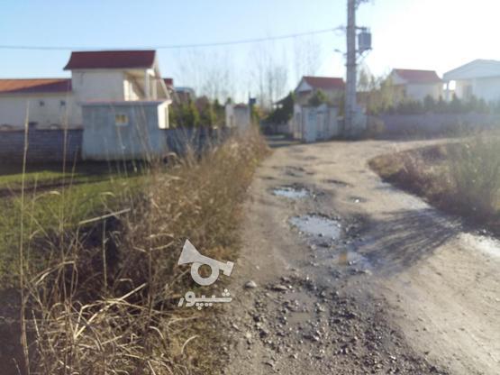فروش زمین مسکونی 400 متر در آمل در گروه خرید و فروش املاک در مازندران در شیپور-عکس1
