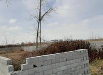 فروش زمین مسکونی 276 متر در چمستان در شیپور-عکس کوچک