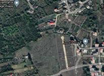 فروش زمین مسکونی 2300 متر اسفندان در شیپور-عکس کوچک