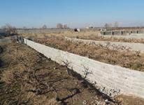 باغچه و زمین 500 متر در شهریار در شیپور-عکس کوچک