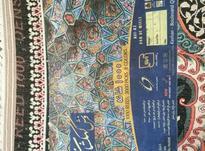 قالی 1000 شانه در شیپور-عکس کوچک
