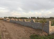 فروش زمین مسکونی 320 متر در چاف و چمخاله در شیپور-عکس کوچک