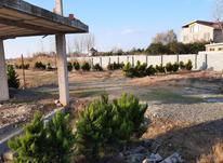 فروش زمین با شرایط عالی با توجه به بودجه شما در محمودآباد در شیپور-عکس کوچک