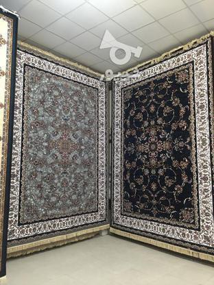 فرش باغ ملک فیلی   در گروه خرید و فروش لوازم خانگی در خراسان رضوی در شیپور-عکس1