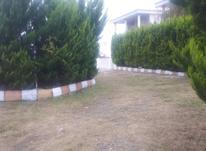 فروش زمین 280 متری شهرکی در نوشهر- نخ شمال در شیپور-عکس کوچک