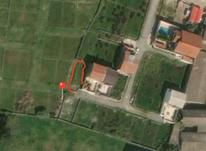 231متر زمین در اجاکسر بابلسر در شیپور-عکس کوچک