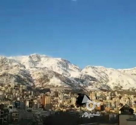 حوالی پارک قیطریه 151 متر  فروش فوری ویو ابدی در گروه خرید و فروش املاک در تهران در شیپور-عکس6