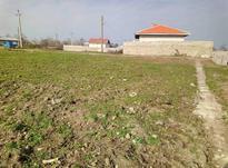 فروش زمین مسکونی 275 متر در صومعه سرا در شیپور-عکس کوچک