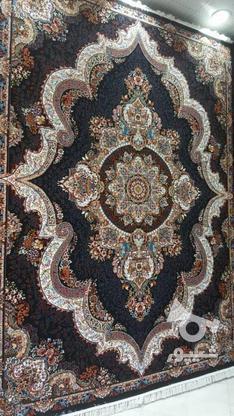 فرش 700شانه کد شهیاد / بدون واسطه در گروه خرید و فروش لوازم خانگی در خراسان رضوی در شیپور-عکس1