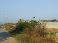 زمین مسکونی 300 متر در آمل در شیپور-عکس کوچک