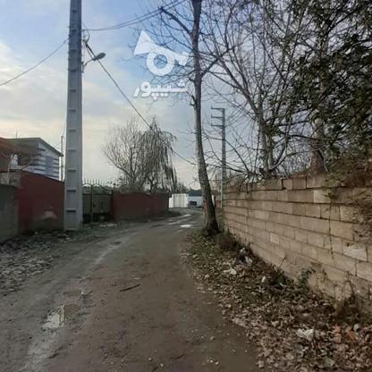 ویلا زیر قیمت 560 متر در نور در گروه خرید و فروش املاک در مازندران در شیپور-عکس12