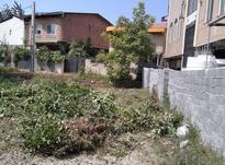 فروش زمین 250 متر در نوشهر در شیپور-عکس کوچک