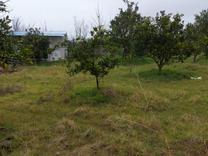 فروش زمین چسبیده بافت 206متری در منطقه برند در شیپور