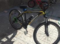 دوچرخه  دومینو در شیپور-عکس کوچک