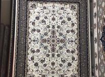 فرش به قیمت درب کارخانه  در شیپور-عکس کوچک