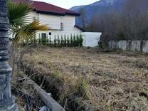 فروش ویژه زمین 500 متر با موقعیت عالی در کیسی نوشهر   در شیپور