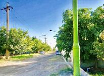 زمین قواره 2000 متری در محیطی امن و شهرکی در شیپور-عکس کوچک