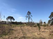 زمین مسکونی 250 متر در محمودآباد در شیپور-عکس کوچک