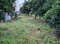 ۲۰۰مترزمین مسکونی داخل باغ مرکبات بامجوزساخت در شیپور-عکس کوچک