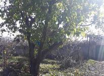 فروش زمین کشاورزی 390 متر در شهریار در شیپور-عکس کوچک