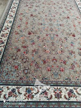 فرش عقیق دربار گیلدا 700شانه اصل تراکم 2550 تمام نخ  در گروه خرید و فروش لوازم خانگی در گلستان در شیپور-عکس6