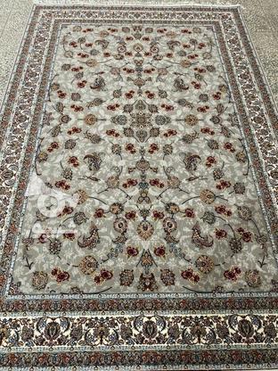 فرش عقیق دربار گیلدا 700شانه اصل تراکم 2550 تمام نخ  در گروه خرید و فروش لوازم خانگی در گلستان در شیپور-عکس2