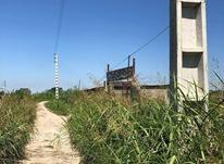 فروش اقساطی ۱۴۱متر زمین شهرکی با سندتک برگ در شیپور-عکس کوچک