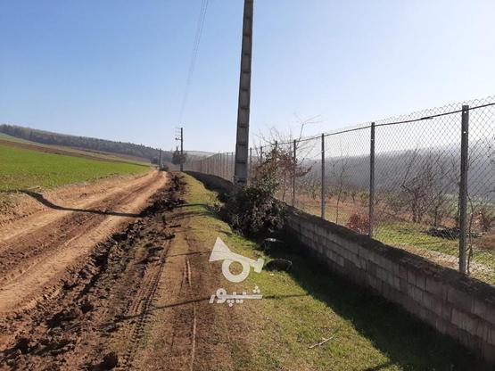 فروش زمین کشاورزی 37000 متر   در گروه خرید و فروش املاک در مازندران در شیپور-عکس3