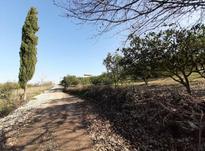 زمین خانه  باغی  4000 مترمربع ابندانکش کیلومتر 3 در شیپور-عکس کوچک