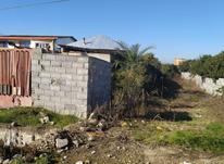 فروش زمین مسکونی 700 متر در قائم شهر، کروا در شیپور-عکس کوچک