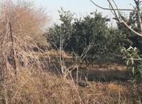 فروش زمین کشاورزی 200 متر در آمل در شیپور-عکس کوچک